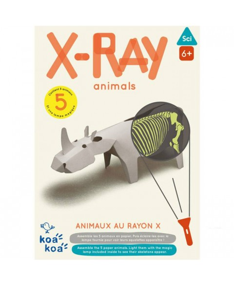 Jouet STEAM : Animaux X Ray